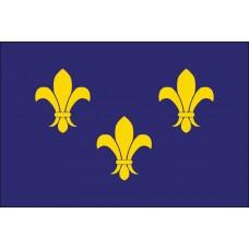 2x3' Nylon Fleur De Lis Blue Flag