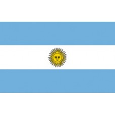 "4x6"" Hand Held Argentina Flag"