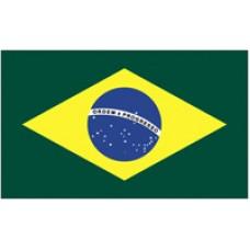 """8x12"""" Hand Held Brazil Flag"""