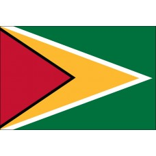 6x10' Nylon Guyana Flag