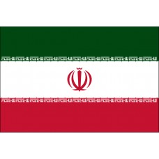 "4x6"" Hand Held Iran Flag"