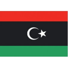 "4x6"" Hand Held Libya Flag"