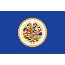 2x3' Nylon OAS Flag