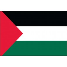 "4x6"" Hand Held Palestine Flag"