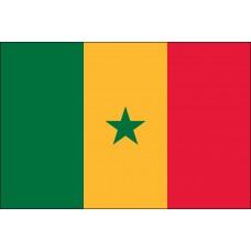 "4x6"" Hand Held Senegal Flag"