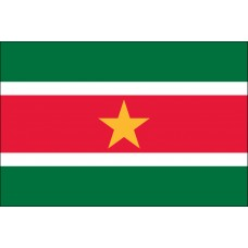 "4x6"" Hand Held Suriname Flag"