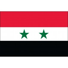 "4x6"" Hand Held Syria Flag"