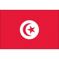 2x3' Nylon Tunisia Flag