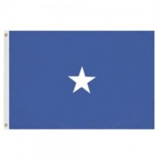 2x3' Nylon Brigadier General Officer (Air Force) Flag